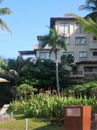 View of hotel next door