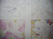 Here see all four with masking fluid (yellowy blobs) on right two. Started under painting on bottom right