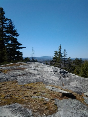 Bog Mountain April 2016