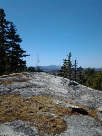 Bog Mountain April 2016