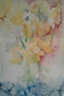 "7""x9"" Daffodils One 2016"