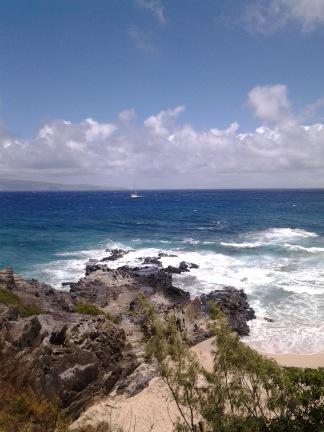 Amazing walking trail in West Maui