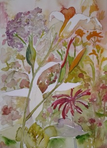 W.I.P. flowers in my yard- I am kind of stuck on how to bring out a focus