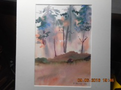 Island A Fire- 2012- Summer painted from Kayak :)