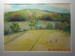 Wendell Field Cows- 2012?