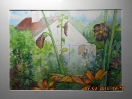 Pilsbury Barn- Muster Field Farm