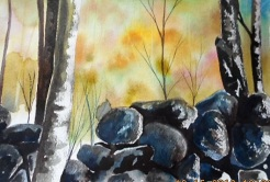 an exersice on painting rocks in water color class with Becky Darling- I got carried away but had fun!